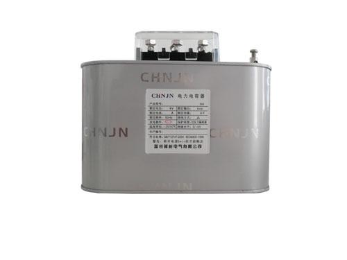 自愈式低压并联电力电容器系列